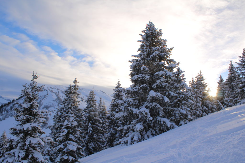 Winter package in Champoussin Lodge